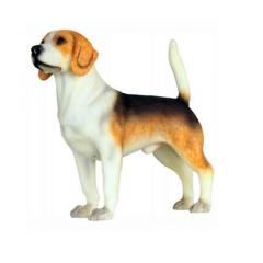 Beagle Hond van Sweetlake