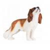Cavelier_hondenfiguur