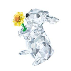 5301583 konijn met zonnebloem